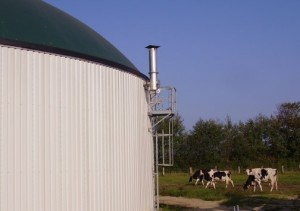 What is biogas?