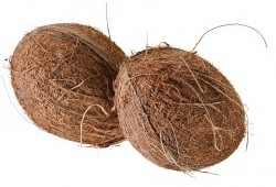 Activated carbon raw material: coconut